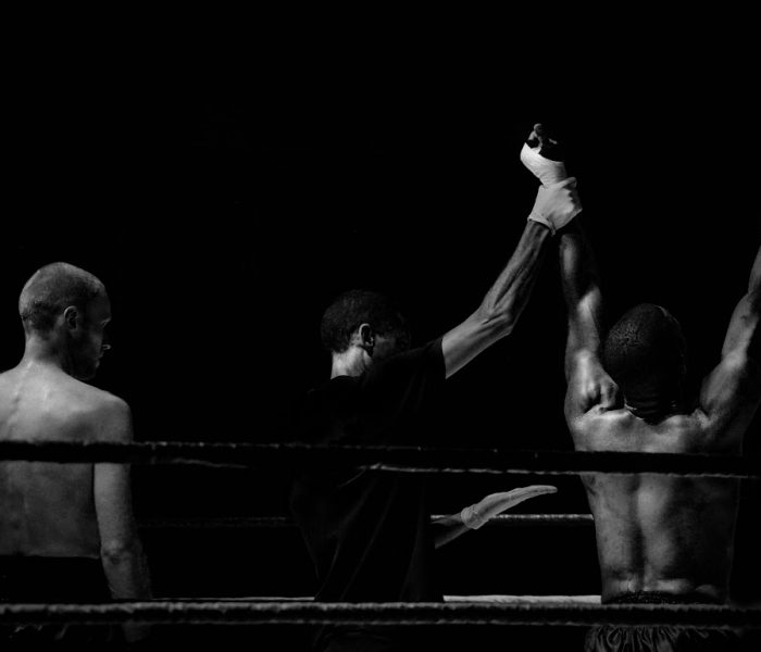 boxer (1)